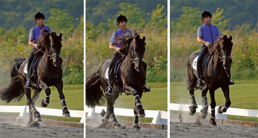 Flying lead change sequence (photo: www.equisearch.com)