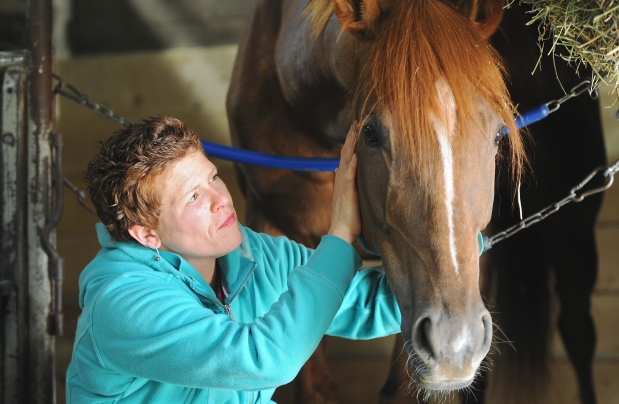 http://www.edmontonjournal.com/life/Animal+communication+breakthrough+veterinarians+lovers/8467743/story.html
